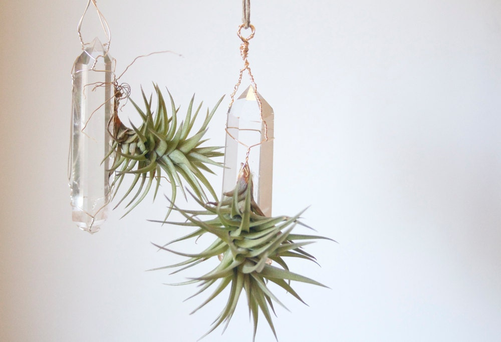 Hanging Air Planter with Quartz Crystal Airplant Display