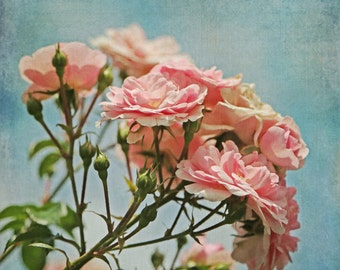 small romantic rose art pink and blue floral art Pink Rose Wall Art pretty art for her farmhouse Chic Wall Art Under 15 floral boudoir art