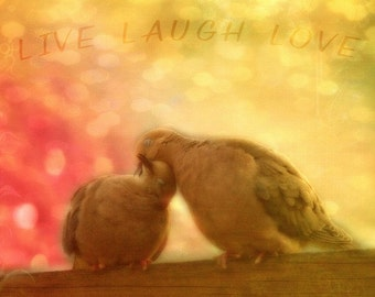 Live Laugh Love, Doves, Birds Decor, Home Decor, Square Print, Just the two of us