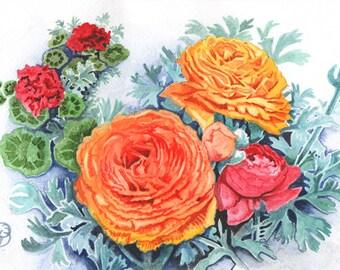 Orange Ranunculus, ORIGINAL watercolor painting, FREE shipping