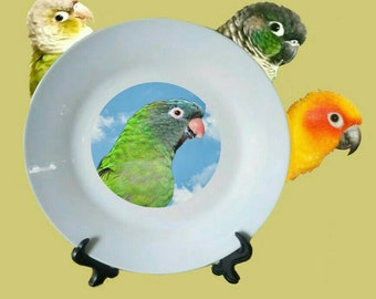 "Blue-crowned Conure Blue Crown Parakeet Parrot Blue Sky Clouds White Decorative Ceramic 8"" Plate and Display Stand"