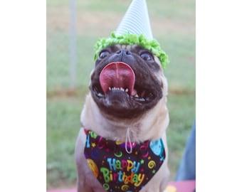 happy birthday dog or cat bandana!