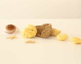 Natural Sea Sponge Fina Silk Type| sense of velvet| Kalymnos Island Greece| All Sizes