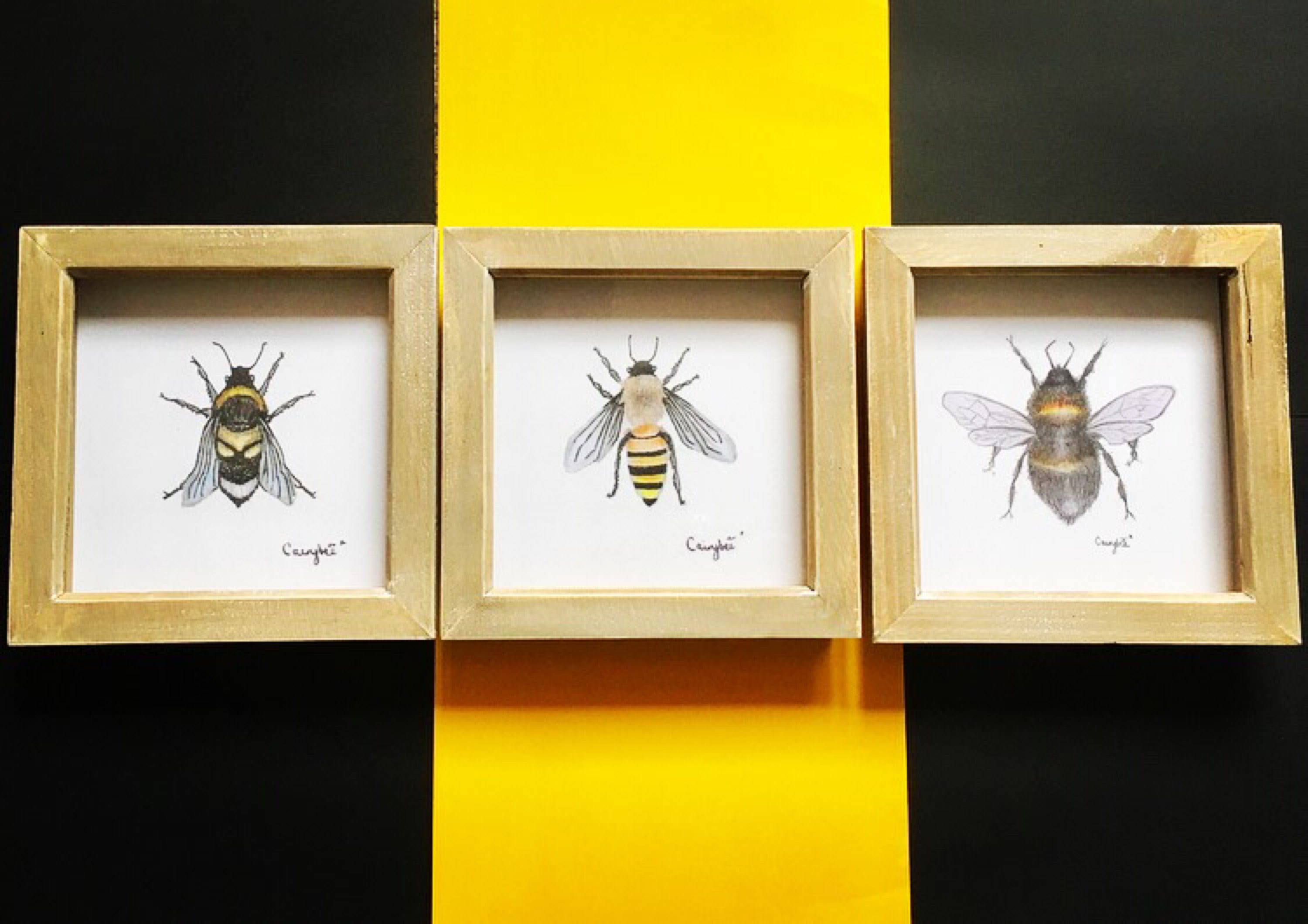 Framed Bee XL Print Wall Art Trio collection