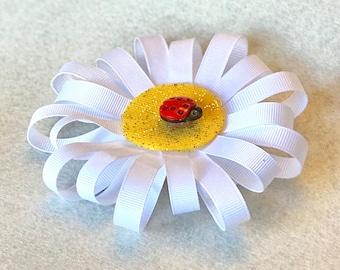 White Daisy with Ladybug
