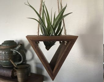 Hanging Air Fern / Succulent Holder (Walnut)