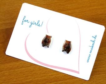 Girl children jewelry ear studs earrings Guinea pig Silver 925