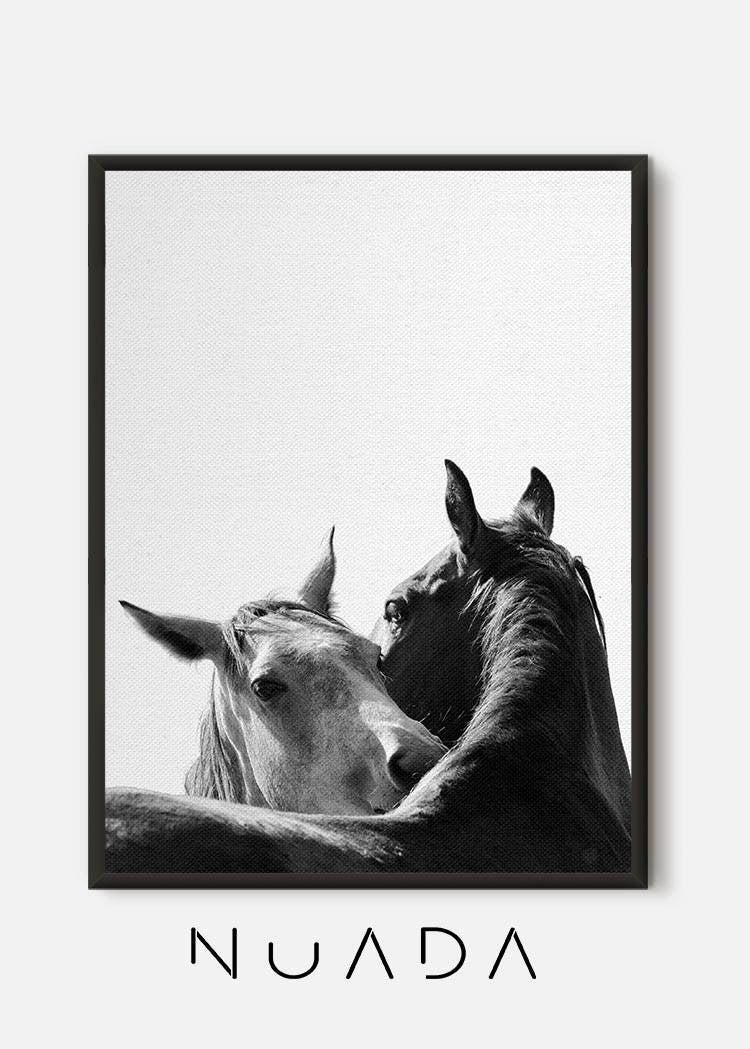 Horse wall art horse print black and white photography zoom jeuxipadfo Gallery