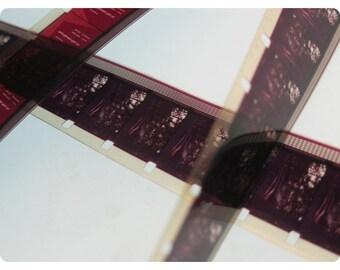 5 YARDS of 16mm Vintage Film Strip Ribbon