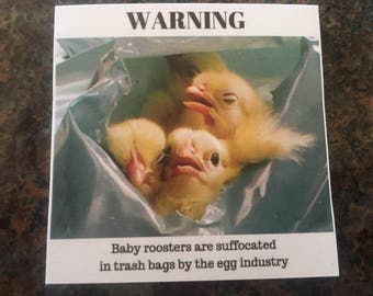 "ANTI-EGGS ACTIVISM Sticky Notes - ""baby roosters are suffocated in trash bags by the egg industry"""