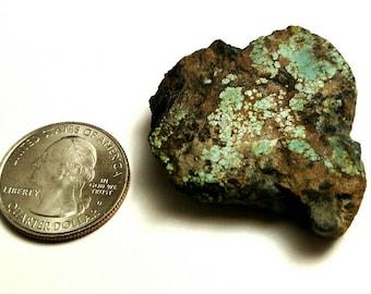 Number 8 Mine Turquoise 95 ct.