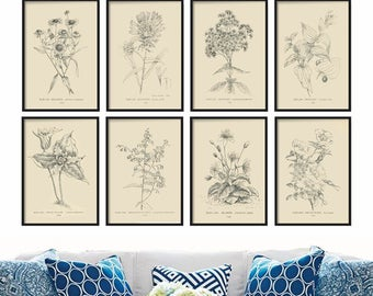 Farmhouse Print Set - Botanical Print Set of 8 - Vintage Prints - Wall Art - Art Print - Wall Hanging - Farmhouse Print Set - Prints
