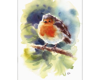 Robin - Original Watercolor Bird Illustration 7 1/2 x 11 inches
