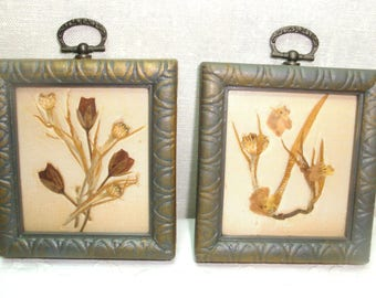"""Dried Flower Collage Dried Pressed Flowers and Flora on a satin background. Light weight, matted and framed in plastic frames. 4"""" by 3.5"""""""