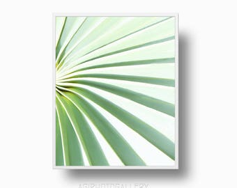 Modern Palm Tree Leaf print, Green Leaf Print, Botanical Tropical Wall Art, Palm tree printable download, palm décor, Abstract leaf print