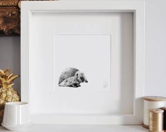 Framed Hedgehog Print