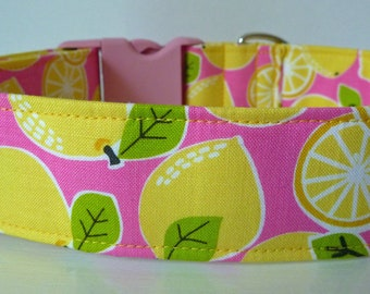 "Lemons Fruit Dog Collar - Summer Dog Collar - Yellow Green & Pink - Boy/Girl Dog Collar -  ""Lemons"" - Free Colored Buckles"