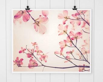 Pink Dogwood Print, dogwood art, soft flower photography, dogwood tree art nature print, pink flower print, pink nursery decor, wall art