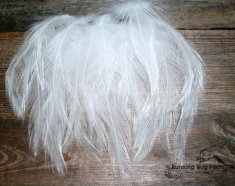White Feather Craft Supplies White Craft Feathers Cruelty Free Feathers Natural Feathers Bird Feathers Hackle Feathers For Crafts 25 3-3.5""