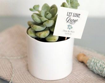 Set of 25 Let Love Grow Succulent Favor Tags, Wedding Favor tags