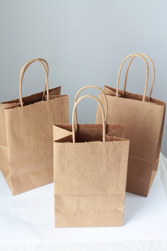 10- Recycled Kraft Handle Bags 8x 5 1/4 x 3 1/2 inches