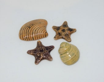 Handmade Ceramic Cabochons Earthenware small Starfish and shells set various colours