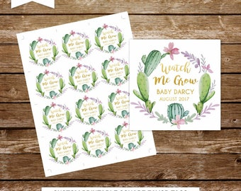 Watch me grow tags succulent favor tags plants favor tags printable wedding favor tags baby shower favor tags succulent favors  279