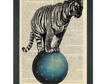Circus tiger on a ball Dictionary Art Print