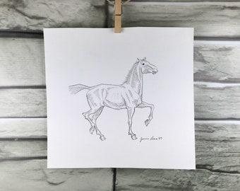 High Strung - horse art original pen & ink horse drawing