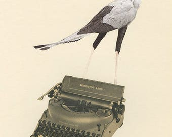 Secretary Bird.  Original collage by Vivienne Strauss.