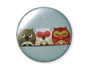 Set of 2 18mm round OWL glass cabochon