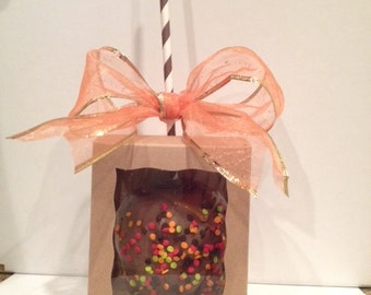 Candy Apple Box ~ Caramel Apple Box ~ Chocolate Apple Box ~ Orament Window View Display Box