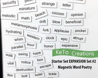 Starter Expansion Set #2 Word Magnets - Word Poems - Fridge Magnets - White Board Word Magnets
