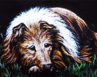 Dog ACEO Giclee Print - COLLIE - Canine Puppy Animal Portrait Face Pet SFA Safyre Studios
