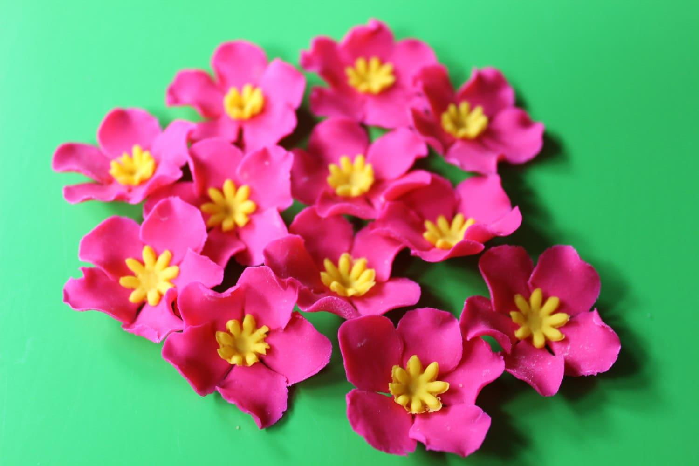 fondant flowers 36 Hawaiian tropical hot Pink yellow cupcake