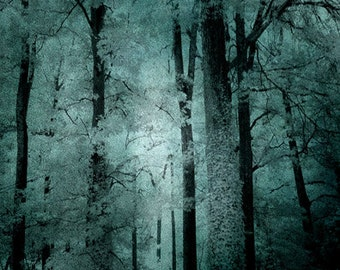 Surreal Nature Photography, Haunting Woods Forest Trees, Mint Teal Woodlands, Dark Green Nature, Surreal Tree Art, Dark Teal Woodlands Print