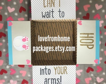 Hop into your arms Easter care package flap kit