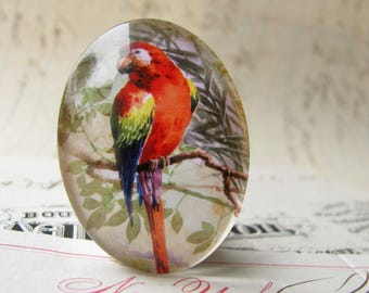 Parrot perched on a branch, from our Beautiful Birds collection of handmade glass cabochons, 40x30mm, red, blue, lime green