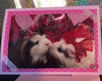 Valentine's Day guinea pig card