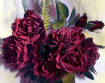 Red Roses Bouquet Oil Painted Photograph Print