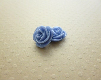 Set of 2 pink resin 13 mm blue - en-0679