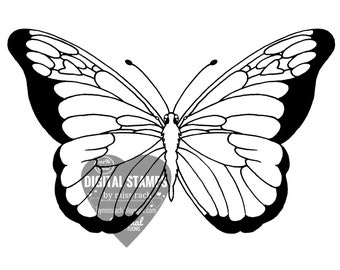 Monarch butterfly, Printable 5x5 Digital Stamp