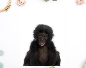 Monkey print, Baby monkey print, Monkey printable, Nursery animal print, Baby animal prints, Baby animal nursery art, Safari nursery theme