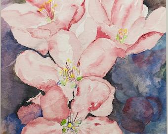Apple Blossoms Original Watercolor Painting - Orange, Bedroom, Kitchen, Bathroom, Nursery Art