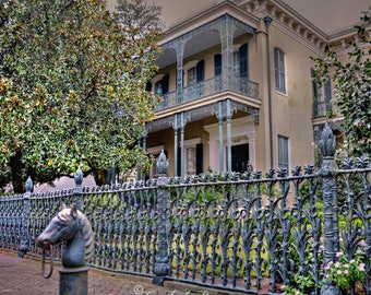 CORNSTALK FENCE Photograph ~ Garden District, New Orleans ~ Wrought iron fence ~ Hitching Post ~Travel USA Photography~Southern Architecture