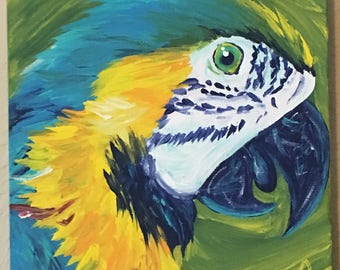 Macaw || Acrylic Canvas Painting || 6x6 inches