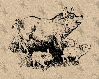 Vintage image Pig Swine Piggy Piglet Instant Download printable retro picture clipart graphic fabric transfer burlap print tote towel 300dpi