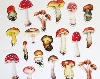 Mushroom Stickers Pack,  Vintage Fungi Ephemera Sticker Set, Mushrooms, Planner, Scrapbook Stickers