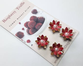 Adorable Magnets for your Refrigerator, Gift for Foodie, Magnet Set from Upcycled Cans, Flower Magnets, Eco Friendly Gift, Raspberry Truffle