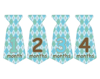 12 Pre-cut Monthly Baby Milestone Waterproof Glossy Stickers - Neck Tie Shape - Design T004-06
